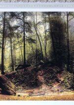 تابلو فرش جنگل تابستاني