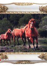 تابلو فرش شكوه اسب ها